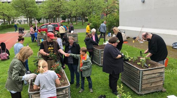 Saisoneröffnung Quartiergarten Ruopigen