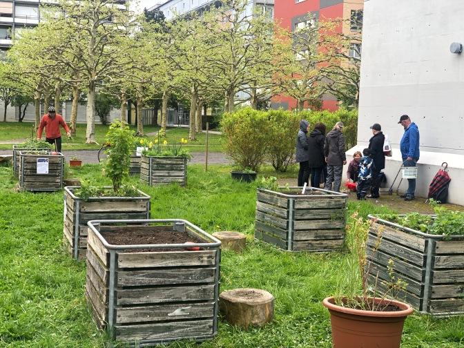 Saisoneröffnung im Quartiergarten